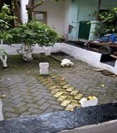 An alleyway graveyard in Kampung Peneleh (Source: Rita Padawangi)